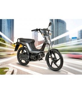 Rieju Bye Bike One+